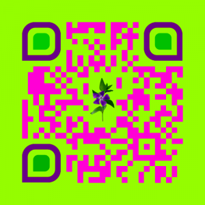 my_mp3_code-3